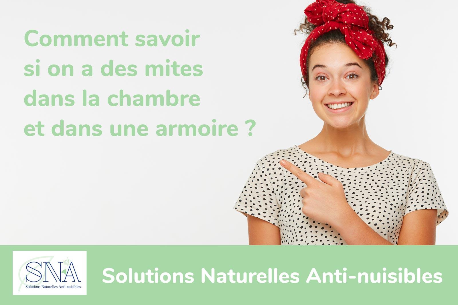 Comment savoir si on a des mites dans la chambre et dans une armoire avec l'entreprise SNA à Toulouse