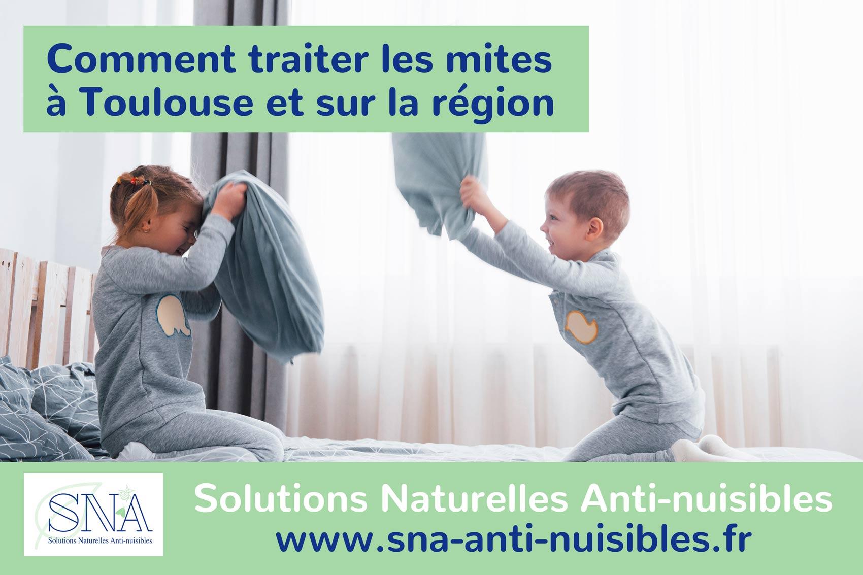 Comment traiter les mites à Toulouse avec SNA