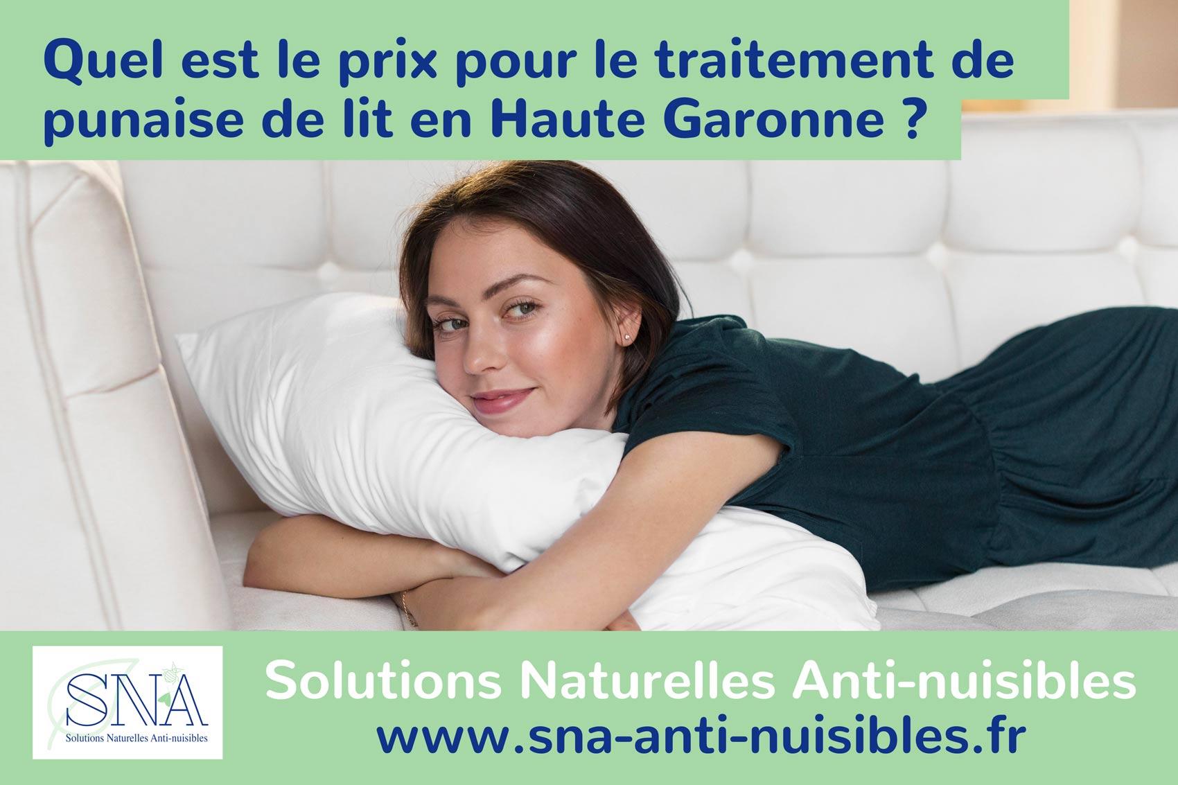 Le prix du traitement punaise de lit à Toulouse chez SNA Anti nuisible