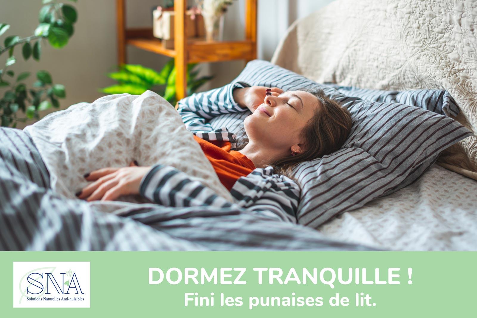 Société de traitement de punaise de lit à Toulouse (31) en Haute Garonne